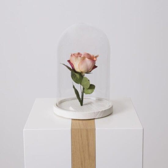 Een of enkele bloemen